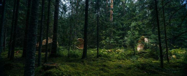 Деревянные приспособления для прослушивания звуков леса (10)