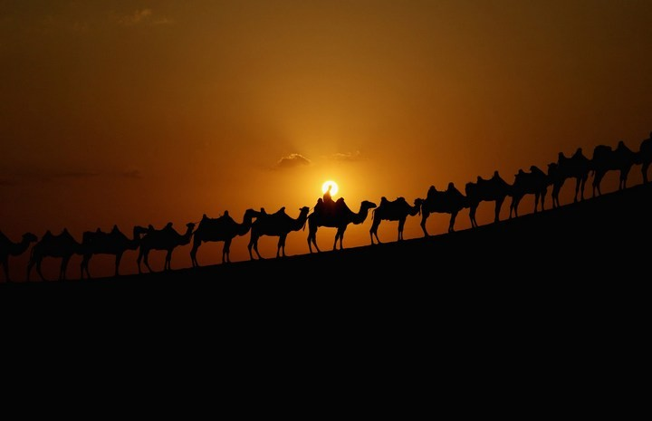 Песчаный Лотос — удивительный отель в пустыне (10)