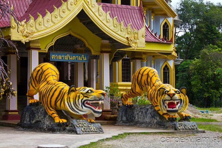 Храм тигров или монастырь в Тайланде (1)