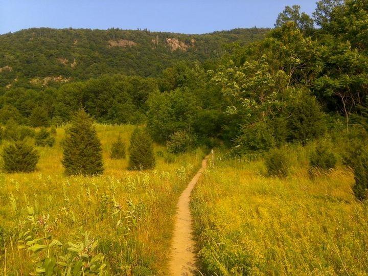 Как сбросить вес или прогулка по Аппалачской тропе (7)