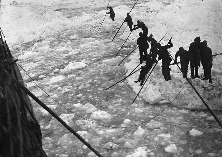 «Эндьюранс», или История выживания 28 человек среди льдов Антарктики (5)