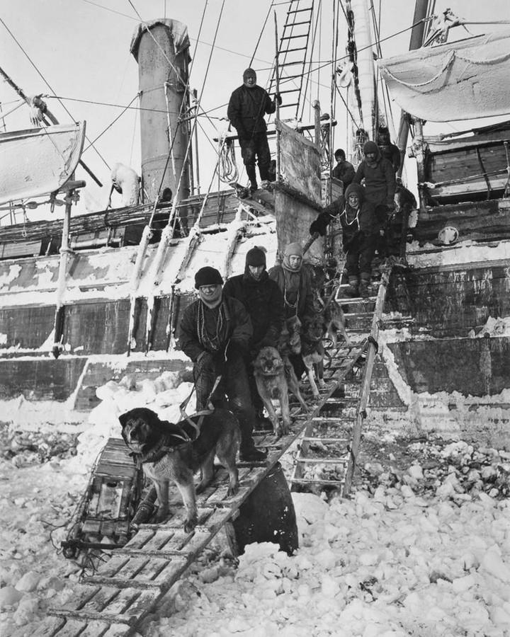 «Эндьюранс», или История выживания 28 человек среди льдов Антарктики (12)