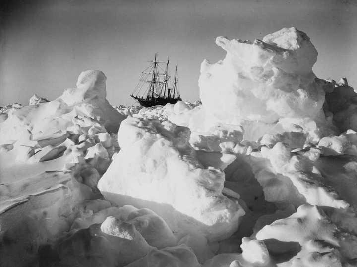 «Эндьюранс», или История выживания 28 человек среди льдов Антарктики (25)