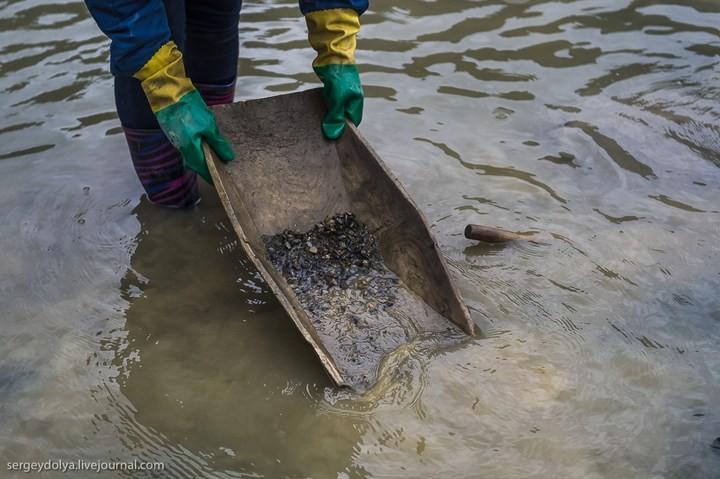 Как добывают золото на Колыме (30)