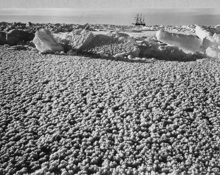 «Эндьюранс», или История выживания 28 человек среди льдов Антарктики (36)