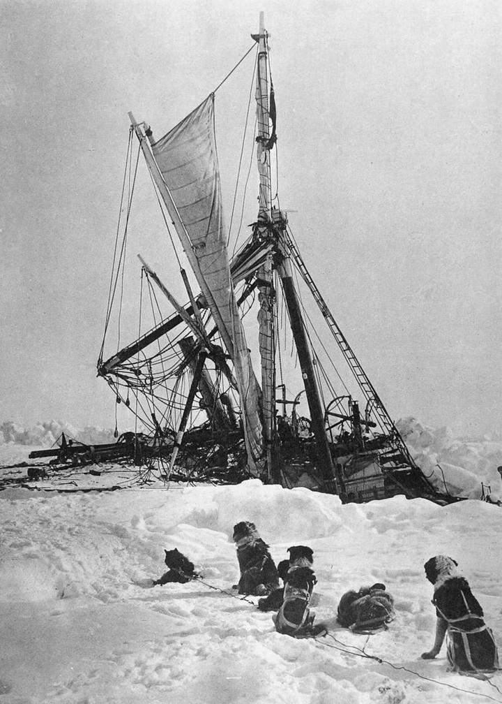 «Эндьюранс», или История выживания 28 человек среди льдов Антарктики (42)
