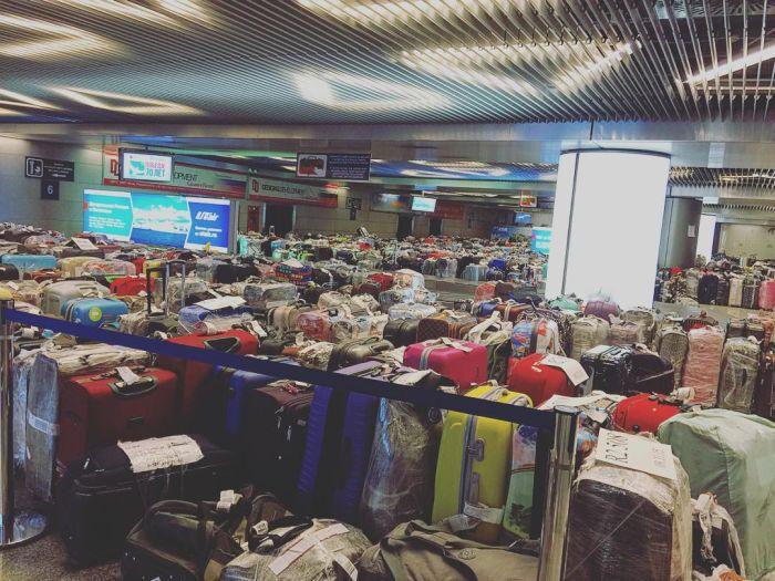 Чемоданный коллапс в российских аэропортах (11)