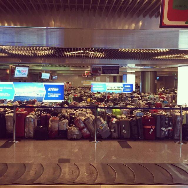 Чемоданный коллапс в российских аэропортах (5)