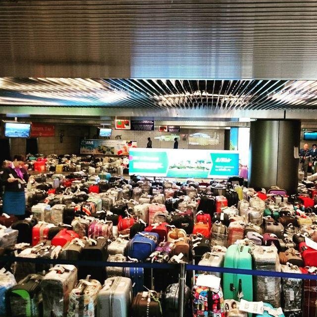 Чемоданный коллапс в российских аэропортах (7)