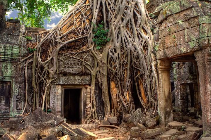 Интересные факты о Камбодже (3)
