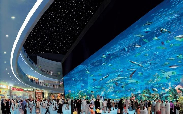 ОАЭ. Интересные факты о Дубае (5)