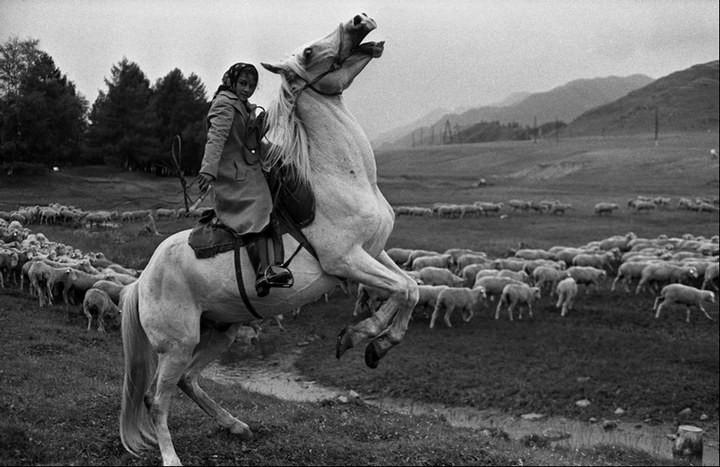 """Непарадные фотографии """"Великого и Могучего"""" от Владимира Соколаева (18)"""