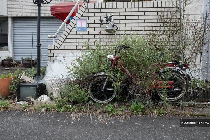 Фукусима через пять лет после трагедии (8)