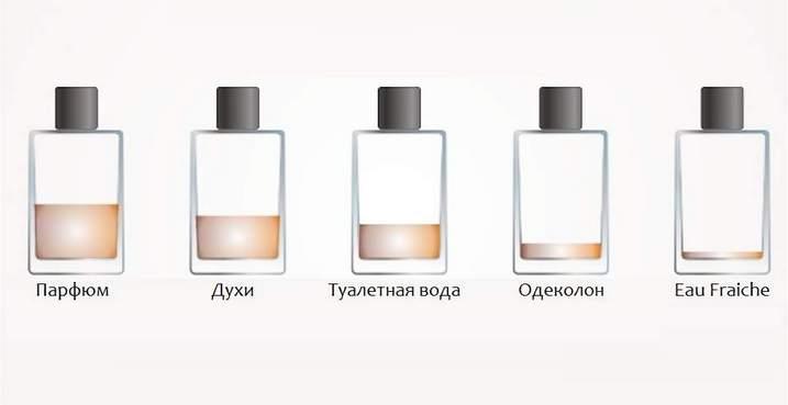 Одеколон, духи, туалетная вода и парфюм — чем отличаются?