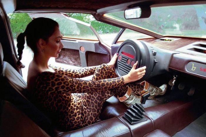 Самые необычные автомобильные рули (9)