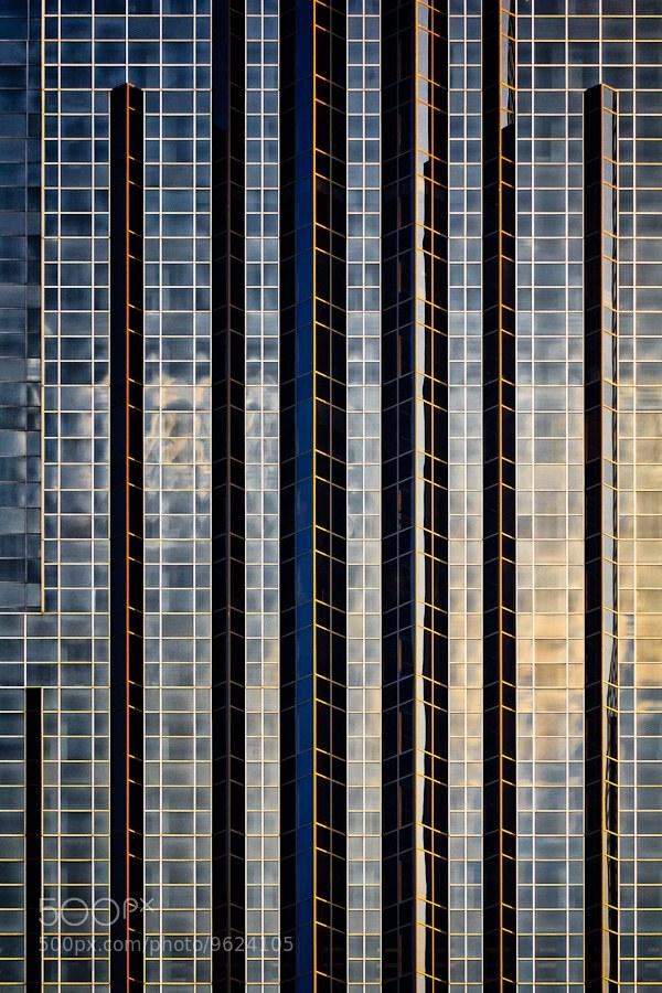 Урбанистические фотографии Джареда Лима (11)