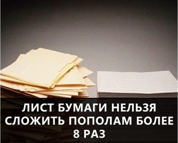 О самых интересных фактах в мире (37)