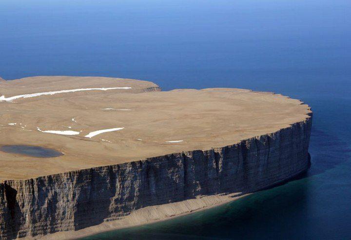Арктический остров является пристанищем для 400.000 гнездящихся птиц (1)