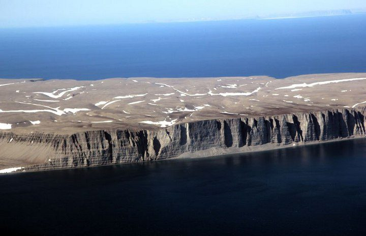 Арктический остров является пристанищем для 400.000 гнездящихся птиц (2)