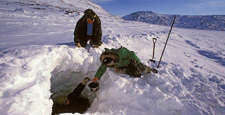 Обычаи эскимосов, которые покажутся для нас странными (5)