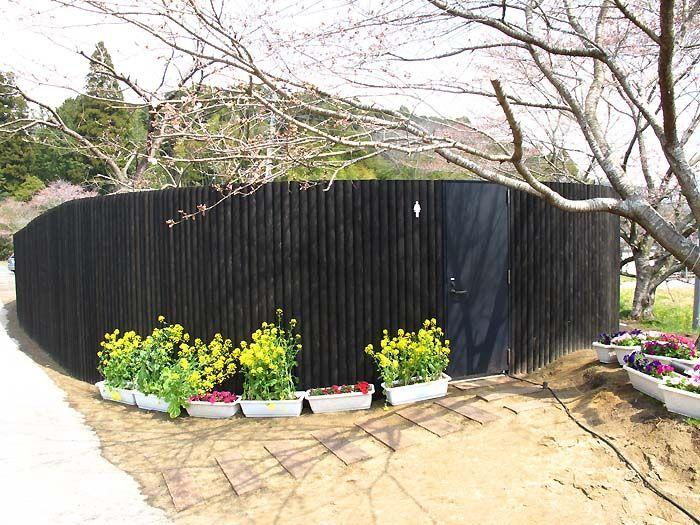 Необычный общественный туалет в Японии (1)