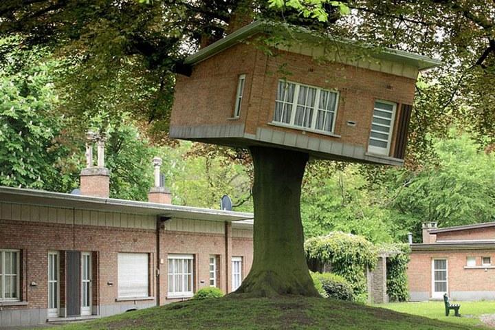 Удивительные дома на деревьях (3)