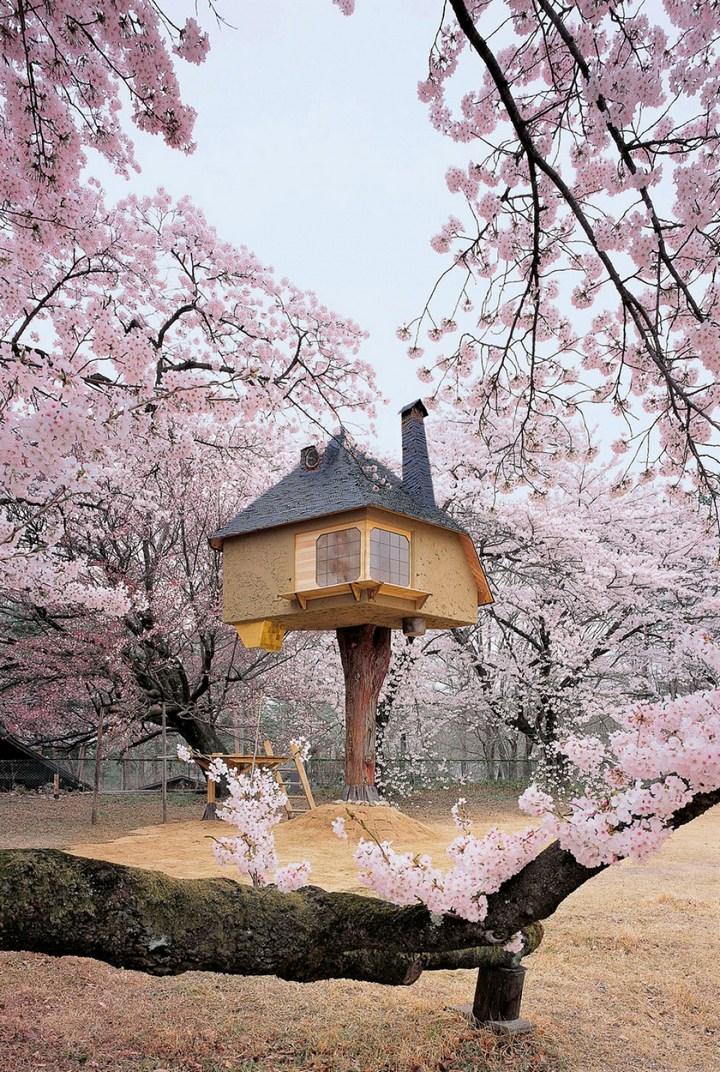 Удивительные дома на деревьях (5)