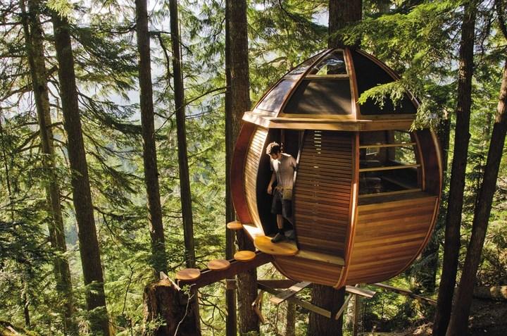 Удивительные дома на деревьях (6)