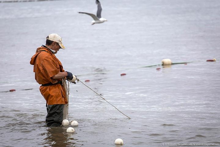 Рыбалка по Чукотски (3)