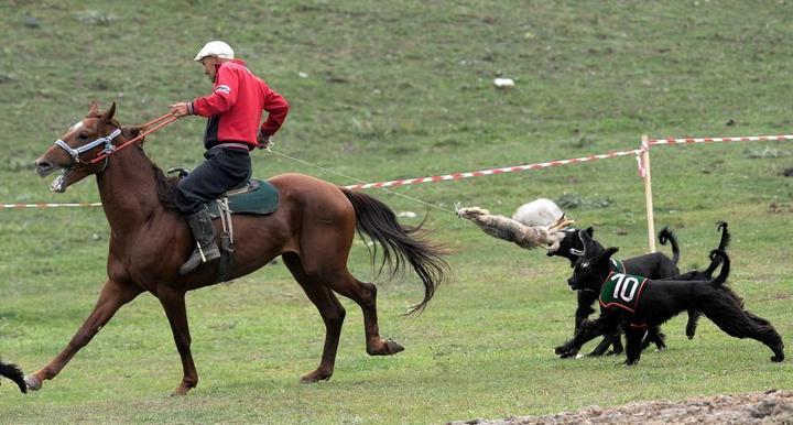 Церемония открытия Всемирных игр кочевников в Кыргызстане (9)