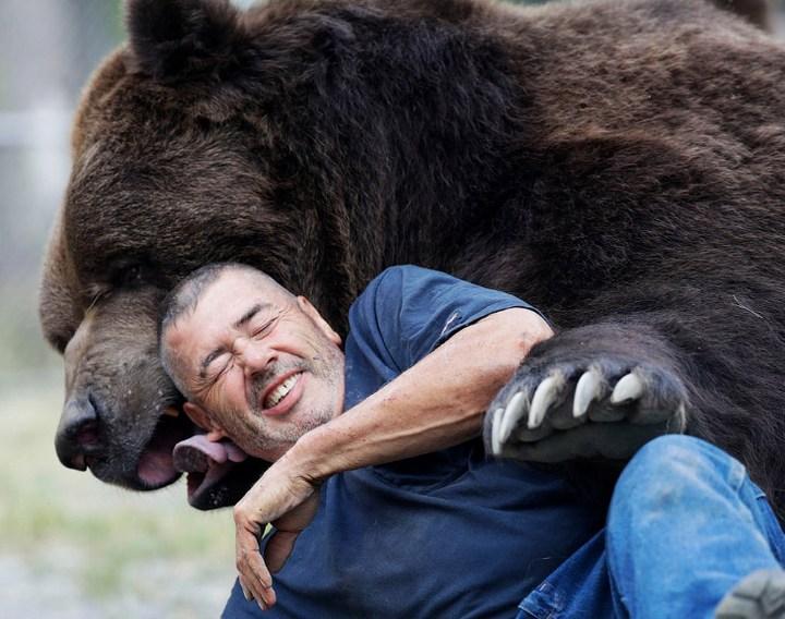Необычная дружба с огромным медведем (2)