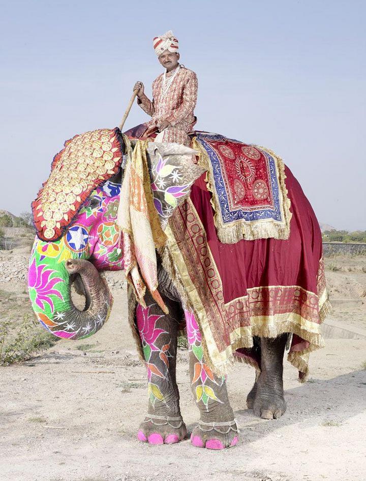 """""""Тюнинг"""" слона по-индийски (2)"""