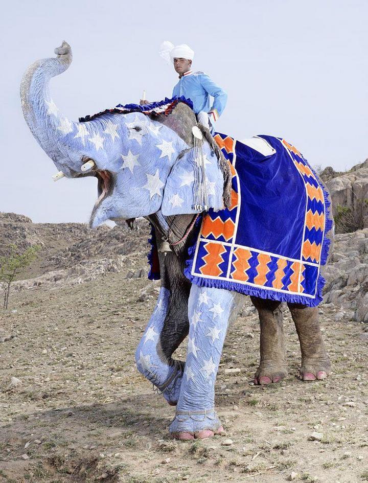 """""""Тюнинг"""" слона по-индийски (3)"""