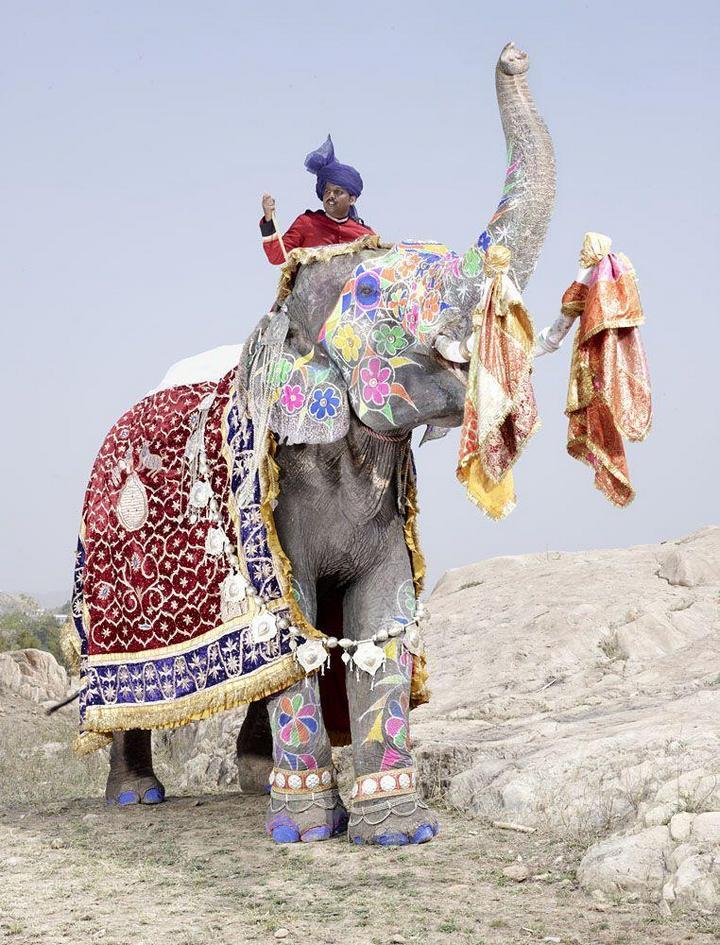 """""""Тюнинг"""" слона по-индийски (8)"""