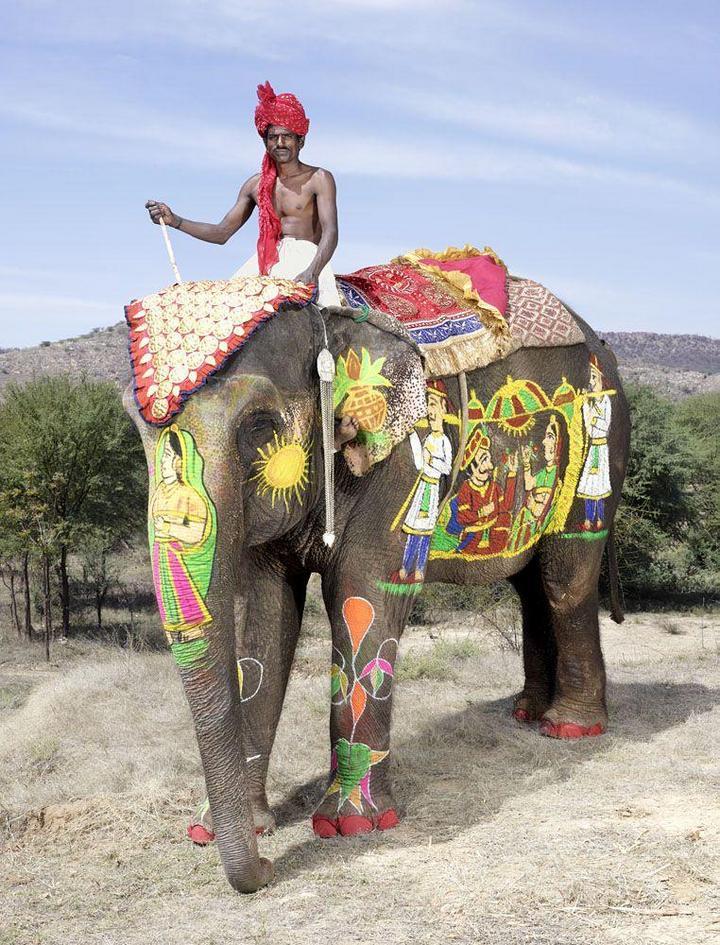 """""""Тюнинг"""" слона по-индийски (15)"""