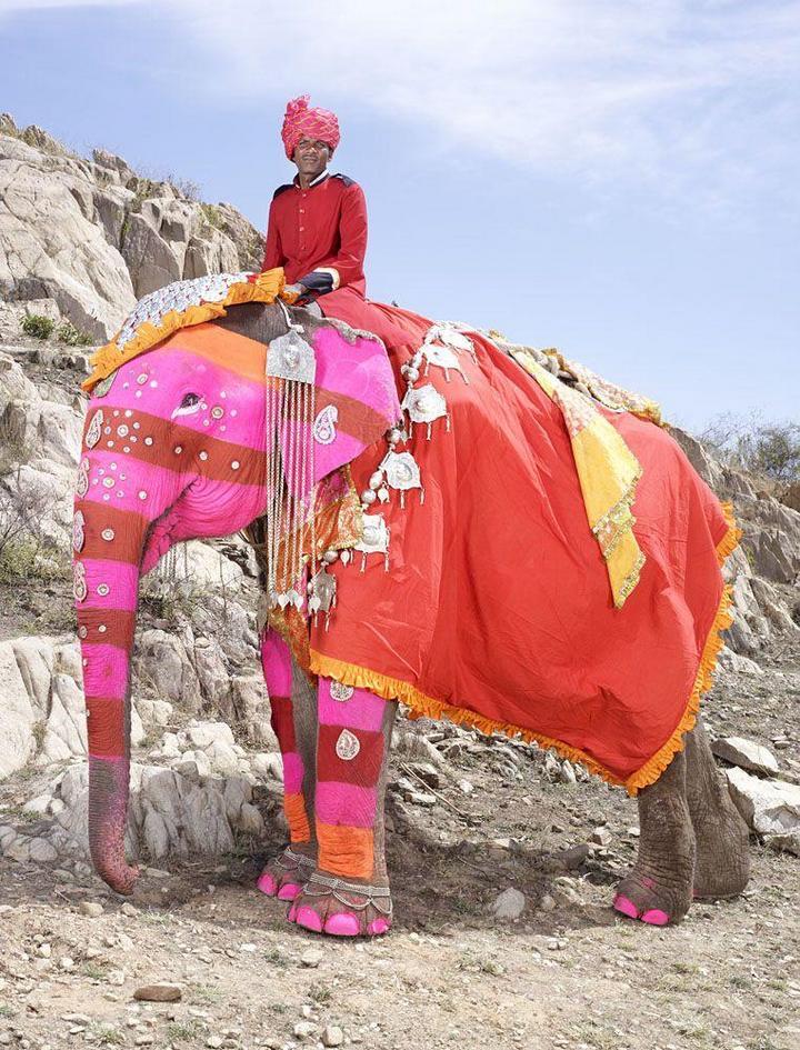 """""""Тюнинг"""" слона по-индийски (16)"""