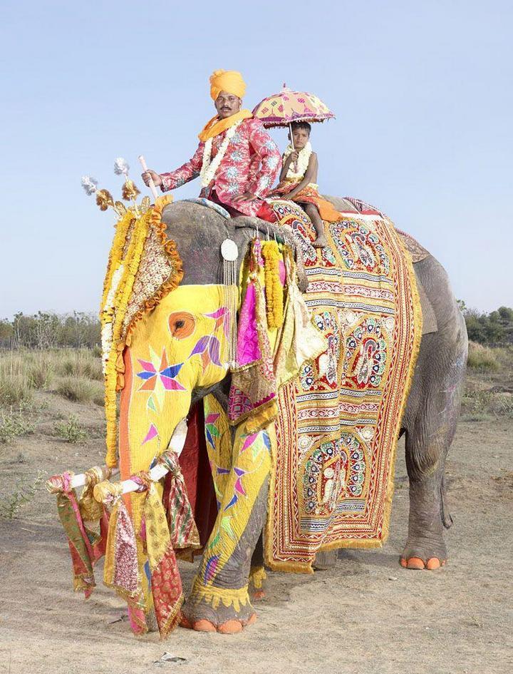"""""""Тюнинг"""" слона по-индийски (18)"""