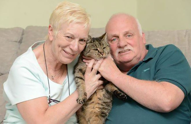 Самая старая в мире кошка отметила 31-й день рождения (3)