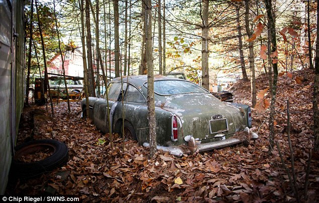 Ржавый «Астон Мартин», 40 лет простоявший в лесу, продают за 400 тысяч долларов (1)