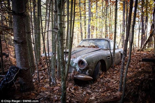 Ржавый «Астон Мартин», 40 лет простоявший в лесу, продают за 400 тысяч долларов (3)