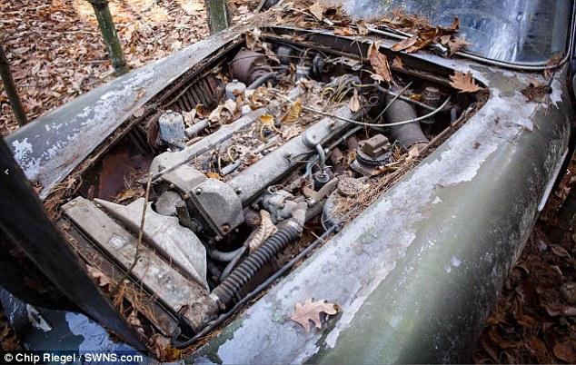 Ржавый «Астон Мартин», 40 лет простоявший в лесу, продают за 400 тысяч долларов (4)