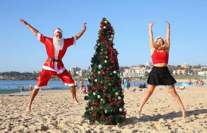 Как отмечают Новый Год в Австралии (2)
