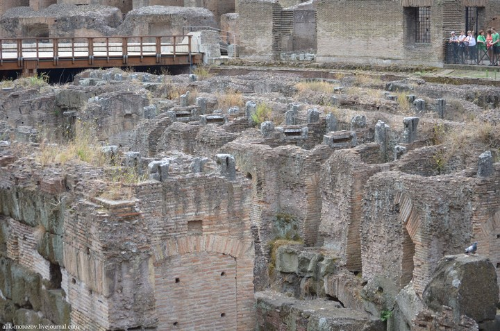 Римский Колизей изнутри (5)