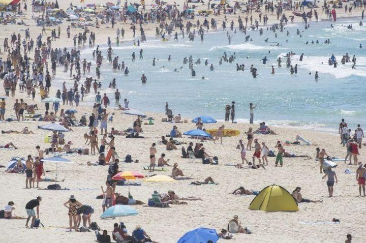 Как отмечают Новый Год в Австралии (10)
