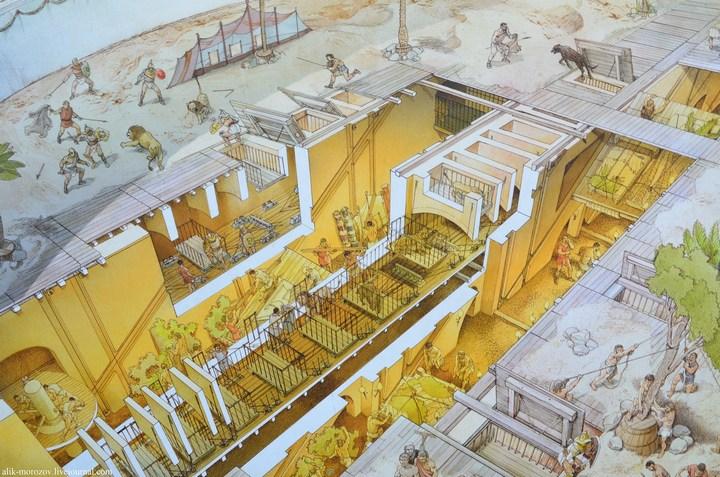 Римский Колизей изнутри (12)