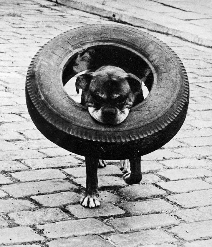 Советские фотографии из архива журнала «Огонек» (6)