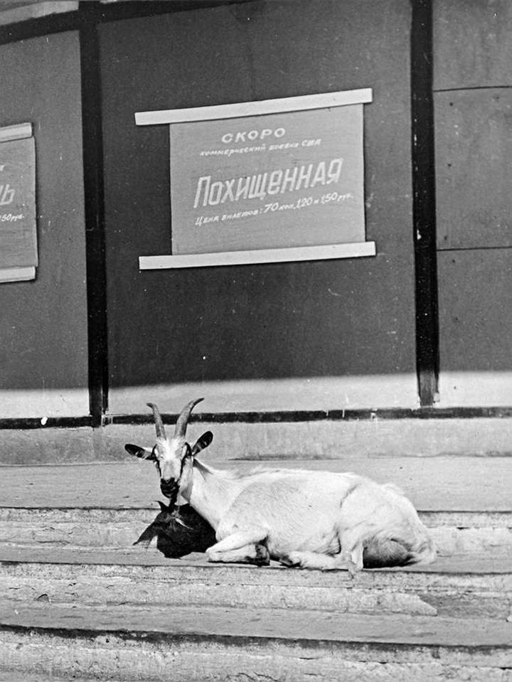 Советские фотографии из архива журнала «Огонек» (14)