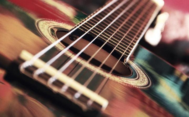 Выбираем гитару: советы начинающим (3)