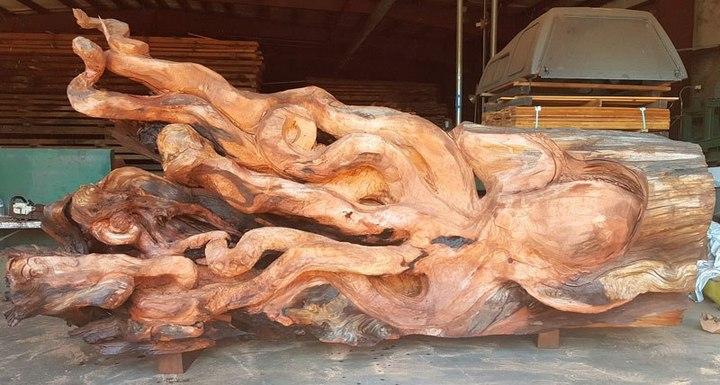 Превращение корня дерева в гигантского осьминога (7)