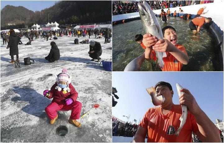 Соревнования по ловле форели в Южной Корее (1)